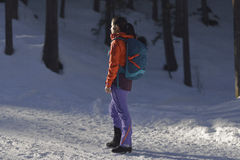 Bergsteiger im Wald lizenzfreie stockfotografie