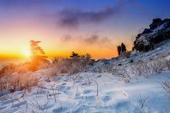 Bergsteiger steht auf der Spitze im Winter, Nationalpark Deogyusan in Korea Stockfotografie
