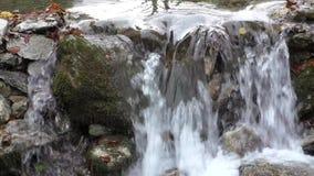 Bergström bland de mossy stenarna arkivfilmer