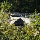 Bergström i skogen fotografering för bildbyråer