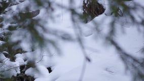 Bergström i träna med vattenfallet och snö lager videofilmer