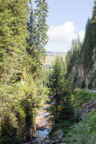 Bergström som flödar bland stupen av de Rhodope bergen Arkivfoto