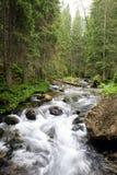 bergström Arkivbilder