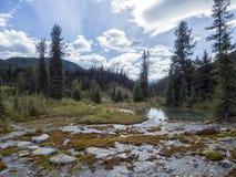 Bergstromen die tot een Vijverlandschap leiden royalty-vrije stock foto's