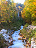 Bergstroom in de Lepena-vallei Stock Afbeeldingen