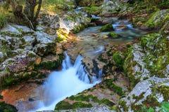 Bergstroom in de Lepena-vallei Royalty-vrije Stock Afbeelding