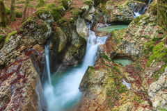 Bergstroom in de Lepena-vallei Royalty-vrije Stock Foto's