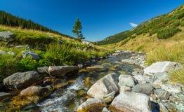 Bergstroom in de Transylvanian-Alpen Royalty-vrije Stock Foto