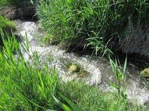 Bergstroom dichtbij de rivier stock afbeelding