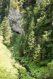 Bergstroom die onder de steile hellingen van de Rhodope-Bergen stromen Royalty-vrije Stock Afbeeldingen