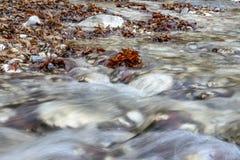 Bergstroom die tussen de stenen stromen die en met bruine de herfstbladeren begroet stock afbeeldingen