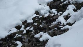 Bergstroom in het hout met waterval en sneeuw stock videobeelden