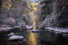 Bergstroom, verse sneeuw, Appalachian Bergen royalty-vrije stock foto