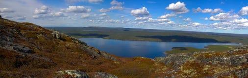 Bergtoendra in Lapland stock afbeeldingen