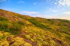 Bergtoendra in Lapland stock afbeelding