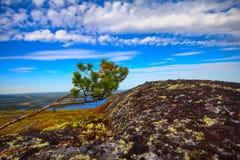 Bergtoendra in Lapland royalty-vrije stock afbeelding