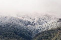 Bergtop in sneeuw wordt behandeld die stock afbeeldingen