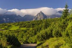 Bergtoppen in wolken Stock Afbeeldingen