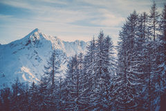 Bergtoppmöte i vinter Arkivbilder