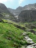 bergtrail Arkivbilder