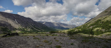 Bergtundran med mossor och vaggar dolt med laver, Hibi Royaltyfri Foto