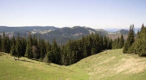 Bergtur i Vatra Dornei, Rumänien Royaltyfri Bild