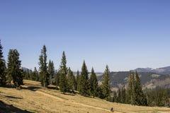 Bergtur i Vatra Dornei, Rumänien Royaltyfria Foton