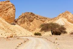 Bergväg Arkivbild