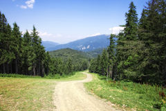 Bergväg Royaltyfri Foto