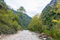 Bergväg i Abchazien Royaltyfri Fotografi