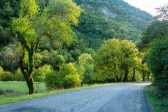 Bergväg i Abchazien Royaltyfri Foto