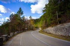 Bergväg i de rumänska Carpathiansna Royaltyfri Fotografi