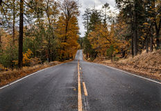Bergväg med nedgångfärger och nytt regn royaltyfri fotografi