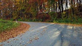 Bergväg och härligt höstlandskap lager videofilmer