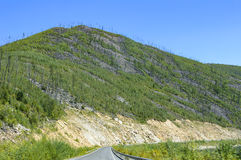 Bergväg på långt - den östliga taigaen Royaltyfria Bilder