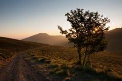 Bergväg på soluppgång Royaltyfri Foto