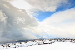 Bergväg som omges av moln royaltyfri bild