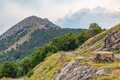 Bergvägkrökning royaltyfri foto
