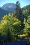 bergvägspolning Arkivfoto