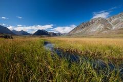 Bergvallei met gletsjers Stock Foto's