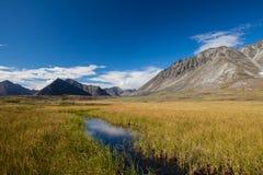 Bergvallei met gletsjers Stock Afbeeldingen