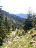 Bergvallei met rivier Royalty-vrije Stock Foto