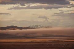 Bergvallei op de donkere bewolkte hemelachtergrond Altay Royalty-vrije Stock Fotografie