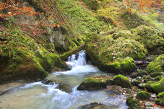 Bergvattenfall. snabbt strömvatten Arkivfoton