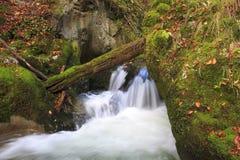 Bergvattenfall. snabbt strömvatten Fotografering för Bildbyråer