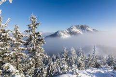 Bergvinter i Tatrasen Royaltyfria Bilder
