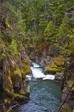 Bergwaterweg met bomen en rotsen stock fotografie