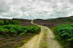 Bergweg Royalty-vrije Stock Afbeelding