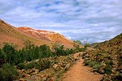 Bergweg in de Altai-bergen Stock Afbeeldingen