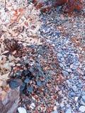 Bergweg in de herfst royalty-vrije stock fotografie